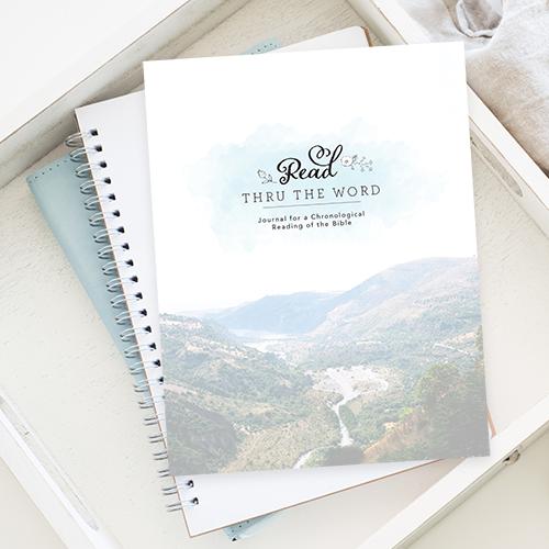 Bible reading plan pdf